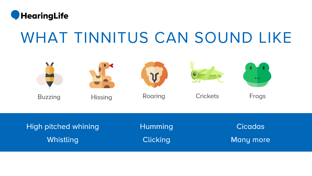 a bee, snake, lion, cricket, and frog in a row with their corresponding sound below to show what tinnitus can sound like.
