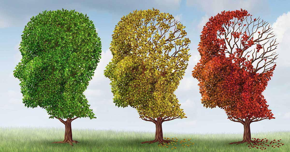memory-function-and-hearing-loss-what-you-need-to-know
