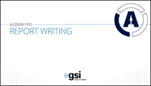 audera-pro-report-writing